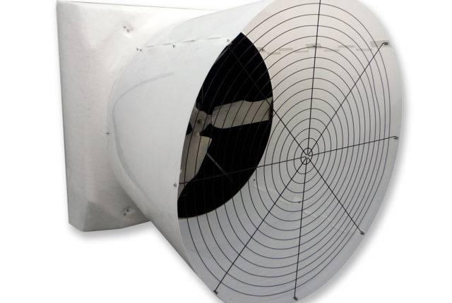 FG-Sable-Fan