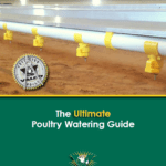 poultry watering guide